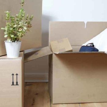 mietvertrag streitlotse. Black Bedroom Furniture Sets. Home Design Ideas