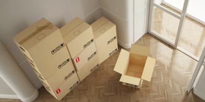 schwalbennest entfernen ist das erlaubt. Black Bedroom Furniture Sets. Home Design Ideas