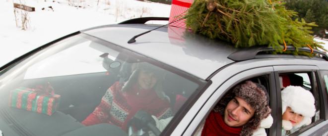 weihnachtsbaum transportieren vorschriften und tipps. Black Bedroom Furniture Sets. Home Design Ideas
